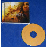 Alanis Morissette ‎- Flavors Of Entanglement - Cd - 2008