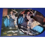 David Bowie - The Man Who Sold the World - Picture Disc - UK - Lacrado