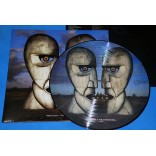 Pink Floyd - The Division Bell - Lp Picture Disc - USA - Lacrado