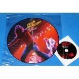 Iggy And The Stooges - Live In Detroit - Lp Picture Disc + DVD - 2013 - USA